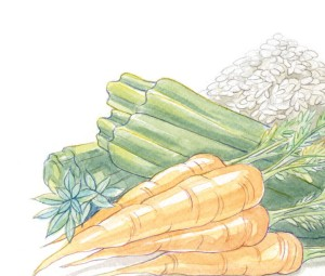 carote e zucchine