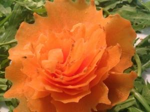 decorazione carote
