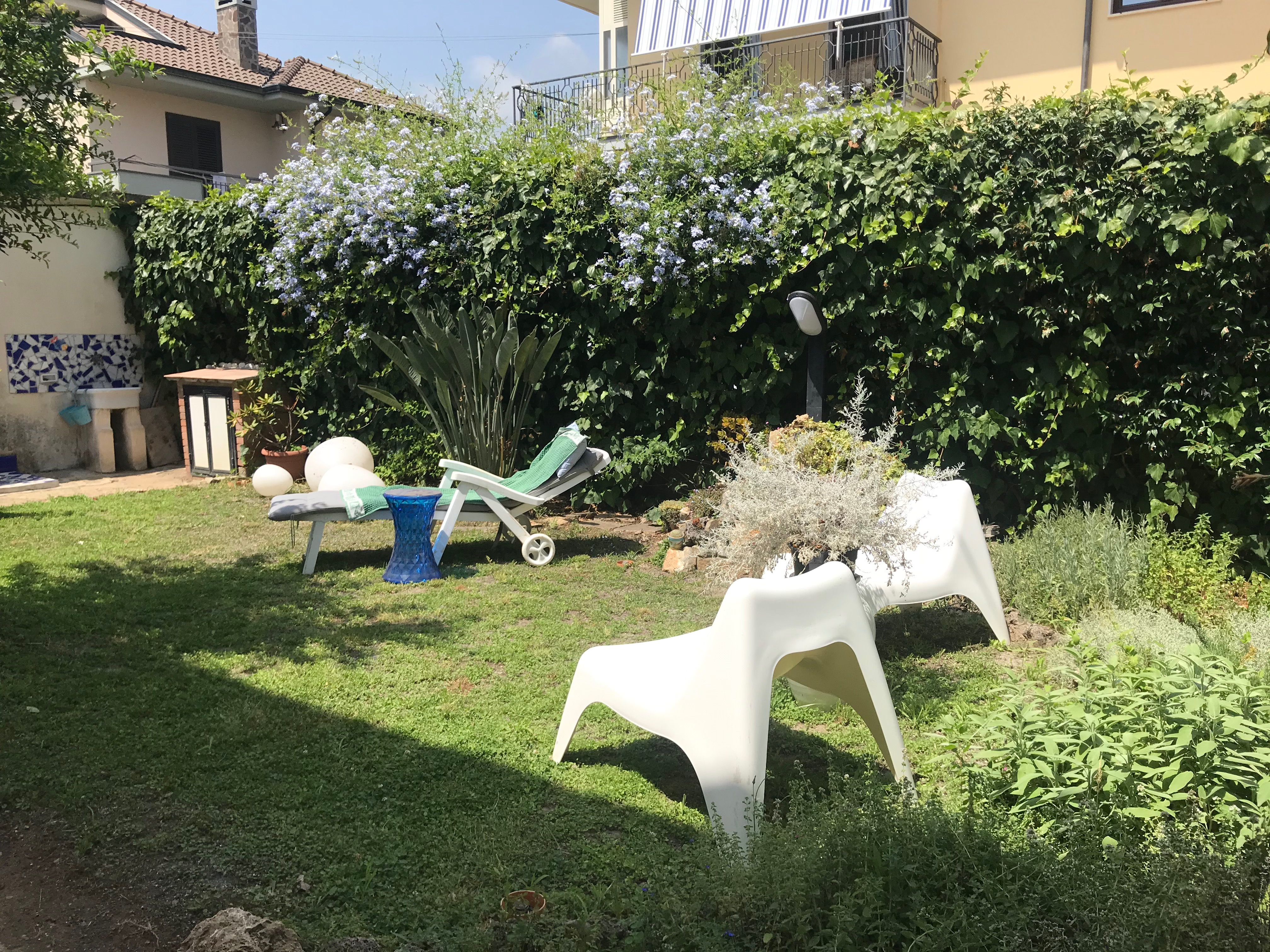 Pianta Simile Al Rosmarino erbe aromatiche, un amore infinito | zuccaecioccolato